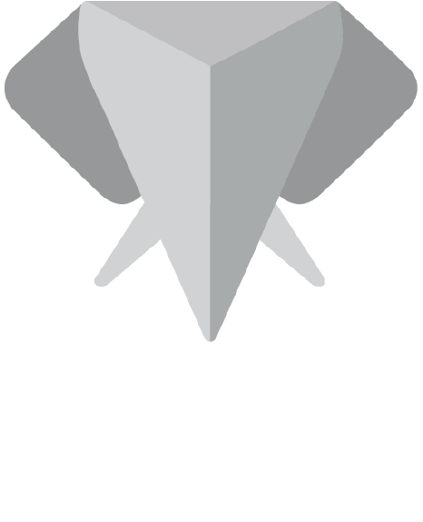 The New Normal Foundation